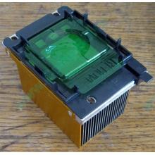Радиатор HP p/n 279680-001 (socket 603/604) - Краснозаводск