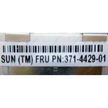 Серверная память SUN (FRU PN 371-4429-01) 4096Mb (4Gb) DDR3 ECC в Краснозаводске, память для сервера SUN FRU P/N 371-4429-01 (Краснозаводск)