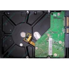 Б/У жёсткий диск 500Gb Western Digital WD5000AVVS (WD AV-GP 500 GB) 5400 rpm SATA (Краснозаводск)